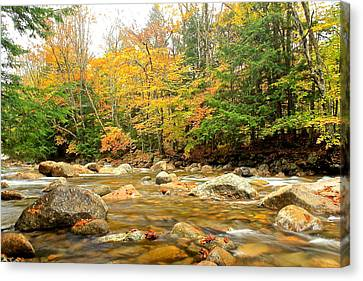 Canvas Print featuring the photograph River In Fall Colors by Amazing Jules