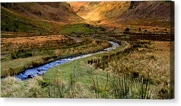 River Near Annascaul Lake In Kerry Canvas Print by Barbara Walsh