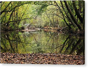 River Oasis Canvas Print by Ann Hernandez