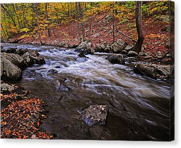 River Of Color Canvas Print by Dave Mills