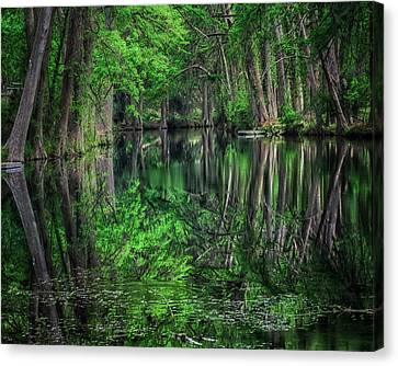 River Of Reflections Canvas Print by Toma Caul