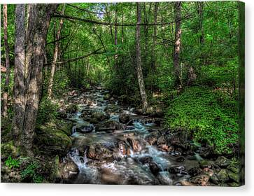 Jones Gap State Park South Carolina Canvas Print