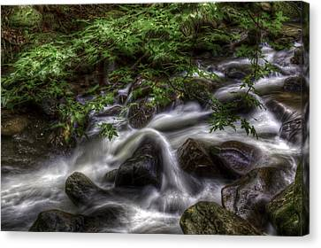 River On The Rocks II Canvas Print