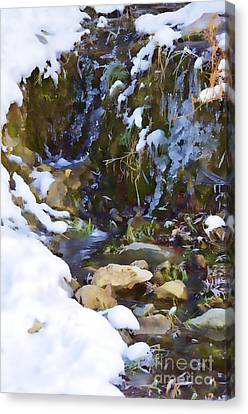 River Painting Canvas Print by Donna Greene