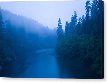 River Passing Through A Forest Canvas Print