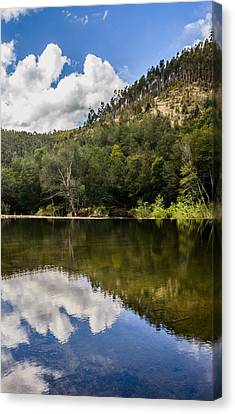 River Reflections I Canvas Print by Marco Oliveira