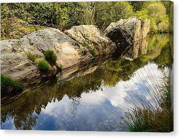 Branch Hill Pond Canvas Print - River Reflections IIi by Marco Oliveira