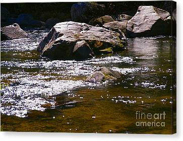 River Reflections Canvas Print by JW Hanley