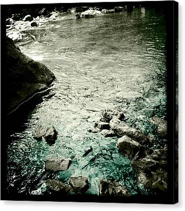 River Rocked Canvas Print by Susan Maxwell Schmidt
