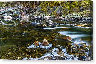 River Run Canvas Print by Mitch Shindelbower