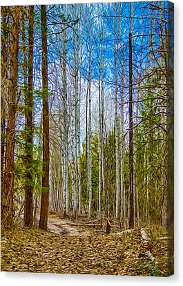 River Run Trail At Arrowleaf Canvas Print