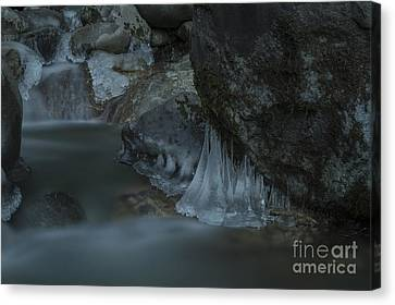 River Stalactites Canvas Print by Rod Wiens