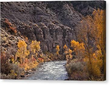 River Through The Aspen Canvas Print by David Kehrli