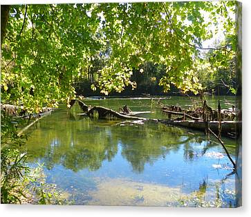 River View Canvas Print by Lisa Wooten