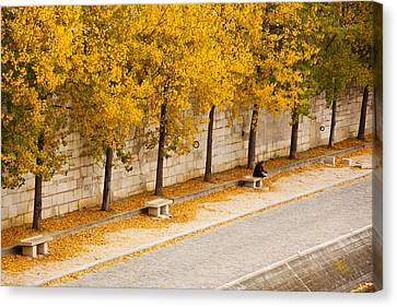 Riverfront, Ile De La Cite, Paris Canvas Print by Panoramic Images
