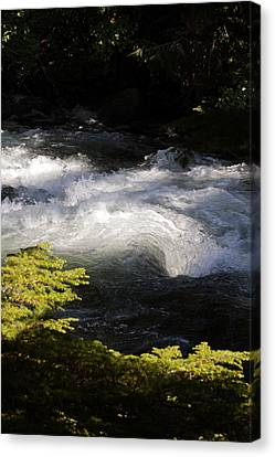 River's Ebb Canvas Print