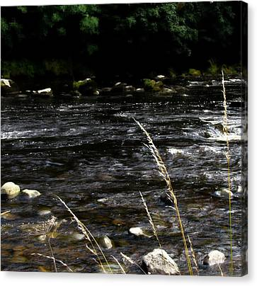 Riverside Canvas Print