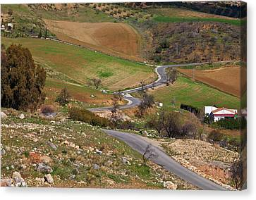 Road Across Farmland At The Edge Of El Canvas Print by Panoramic Images