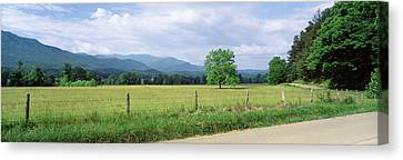 Road Along A Grass Field, Cades Cove Canvas Print by Panoramic Images