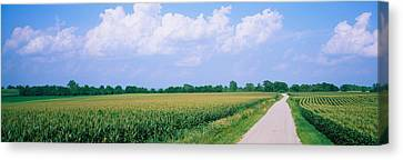 Road Along Corn Fields, Jo Daviess Canvas Print by Panoramic Images