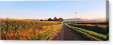 Road Along Rural Cornfield, Illinois Canvas Print by Panoramic Images
