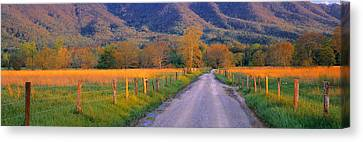 Road At Sundown, Cades Cove, Great Canvas Print by Panoramic Images
