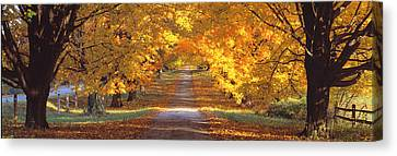 Road, Baltimore County, Maryland, Usa Canvas Print by Panoramic Images