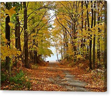 Road Ends At Water Canvas Print by BackHome Images