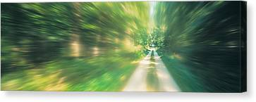 Road, Greenery, Trees, Germany Canvas Print by Panoramic Images