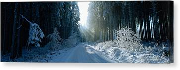 Road, Hochwald, Germany Canvas Print by Panoramic Images