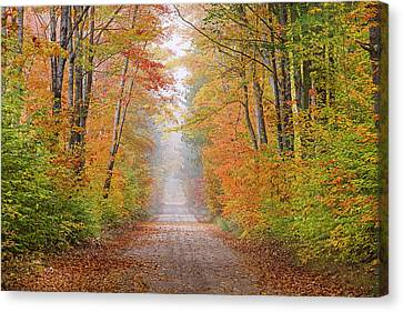 Road In Fall Color Schoolcraft County Canvas Print by Richard and Susan Day