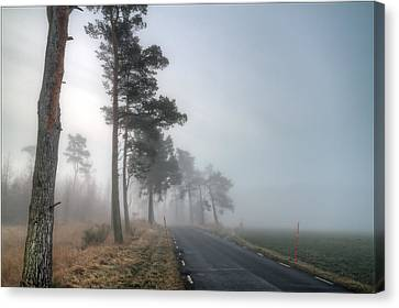 Nobody Canvas Print - Road In Mist by EXparte SE