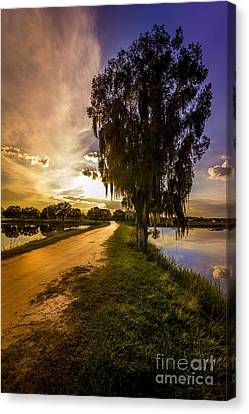 Road Into The Light Canvas Print by Marvin Spates