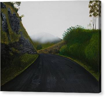 Road Near Gresford Nsw Canvas Print