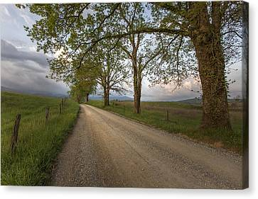 Road Not Traveled II Canvas Print by Jon Glaser