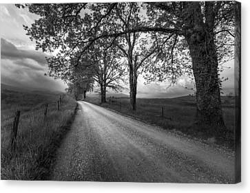 Road Not Traveled Canvas Print by Jon Glaser