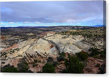 Road Over Slick Rock Canvas Print by David Lee Thompson