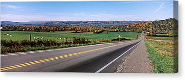 Road Passing Through A Field, Finger Canvas Print by Panoramic Images