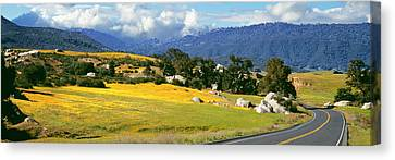 Road Passing Through A Field, U.s Canvas Print by Panoramic Images