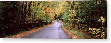 Road Passing Through A Forest, Green Canvas Print by Panoramic Images