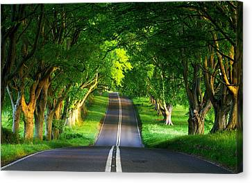 Canvas Print featuring the digital art Road Pictures by Marvin Blaine