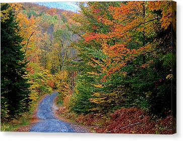 Canvas Print featuring the photograph Road Through Autumn Woods by Larry Landolfi