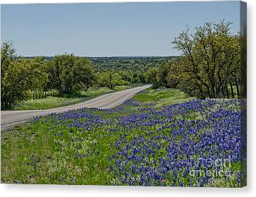Road To Castell Canvas Print