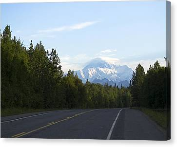 Road To Denali  Canvas Print