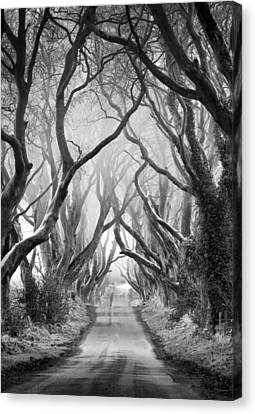 Road To Dream Canvas Print by Pawel Klarecki