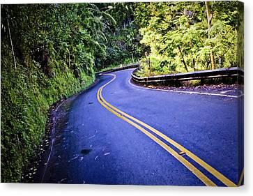 Road To Hana Canvas Print by Adam Romanowicz