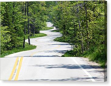 Road To Northport Canvas Print by Kathy Weigman