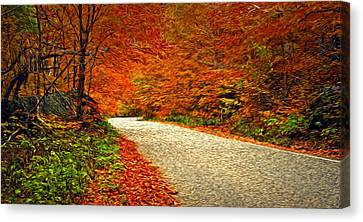 Road To Nowhere Canvas Print by Bill Howard