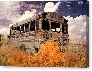 Road To No Where Canvas Print by Cindy Archbell