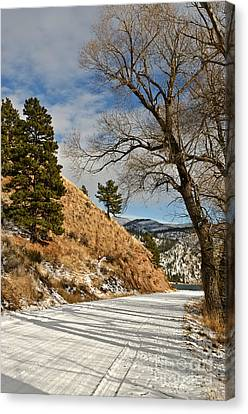 Canvas Print featuring the photograph Road To The Lake by Sue Smith